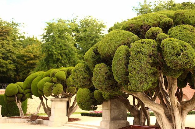 Manicured Gardens | Retiro Park | Chichi Mary Blog
