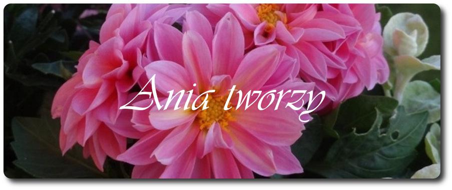 Ania tworzy
