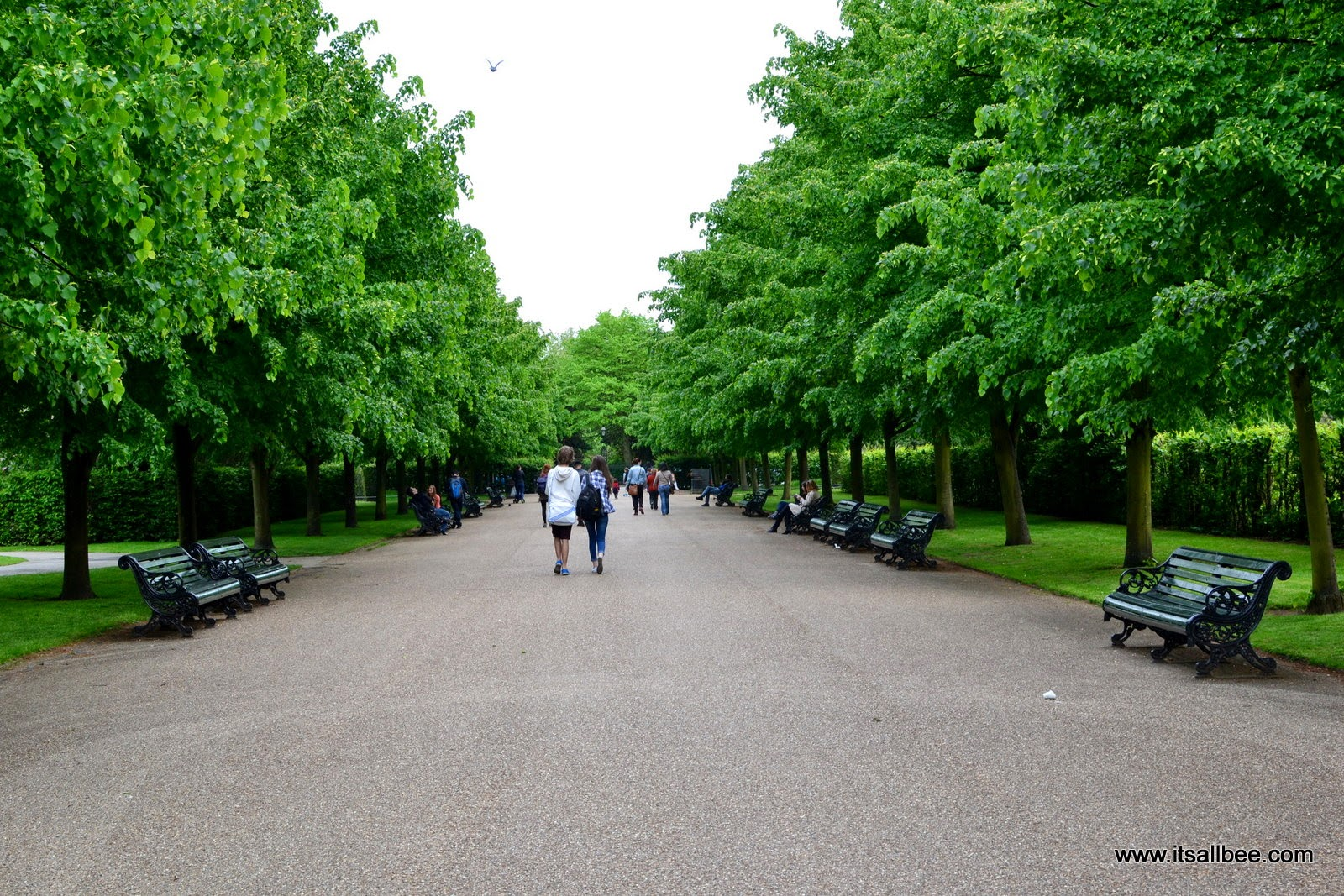 A Walk In The Park | Secrets in Regents Park