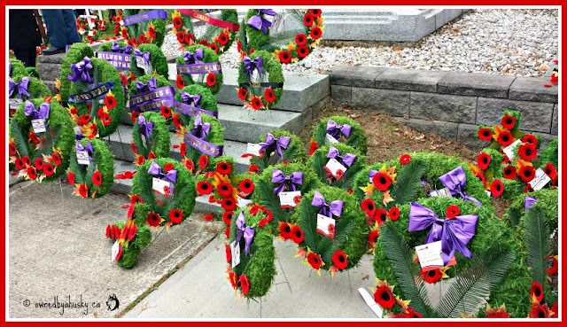 Remembrance Day Photo's 2015