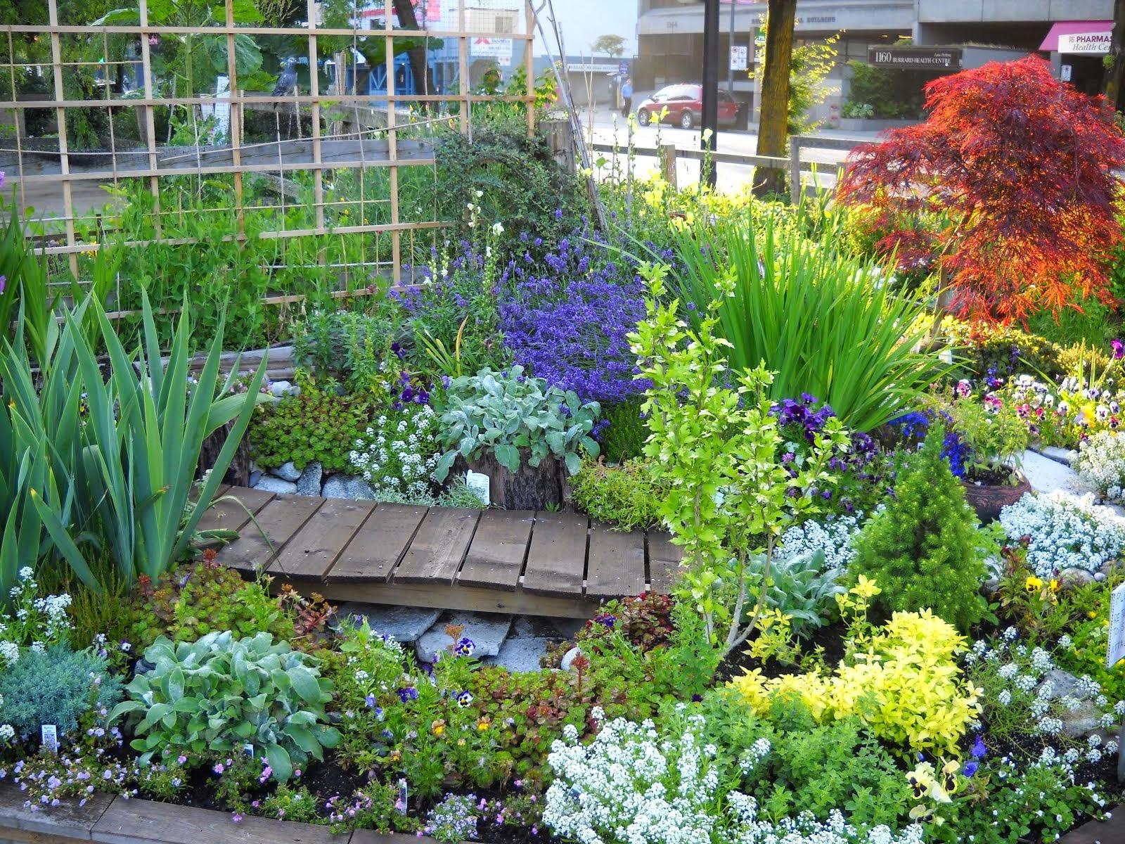 Davies Street Community Garden