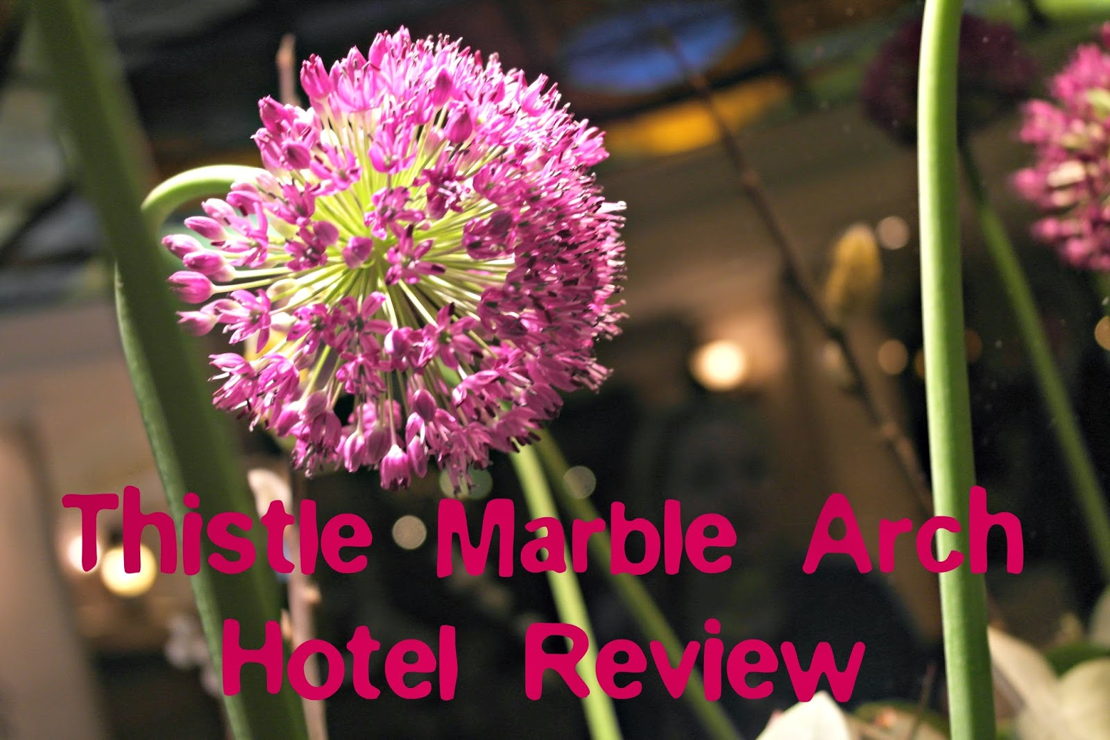 http://www.thistle.com/en/hotels/united_kingdom/london/thistle_marble_arch/index.html