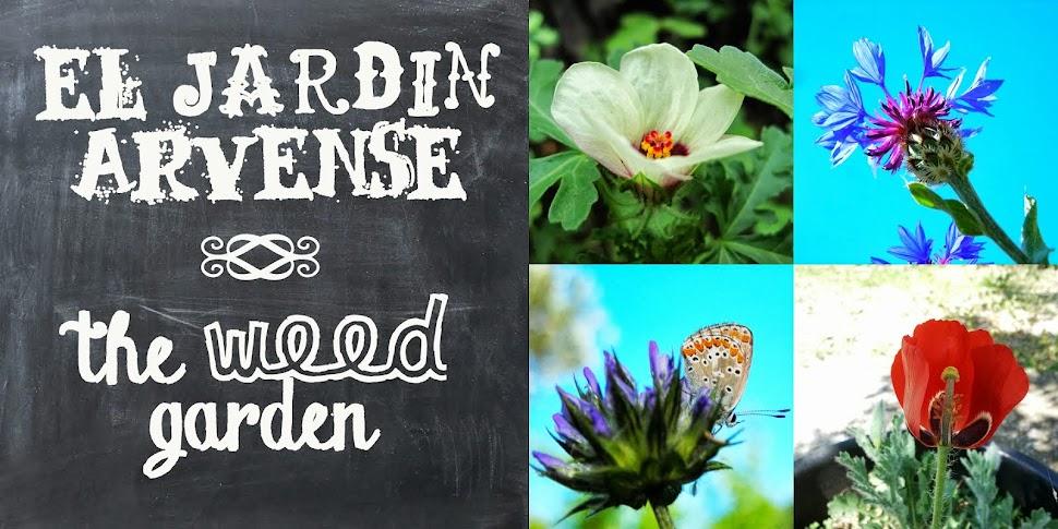 el jardin arvense