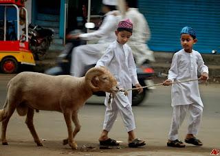 Idul Adha - ilustrasi foto AP