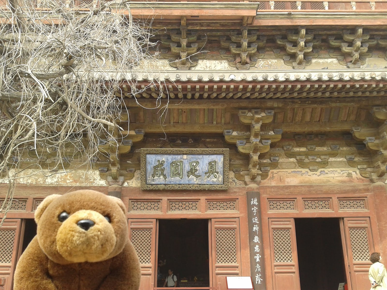 Teddy in front of Dule Temple, China