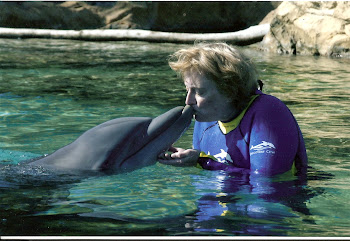 Have you ever kissed a dolphin