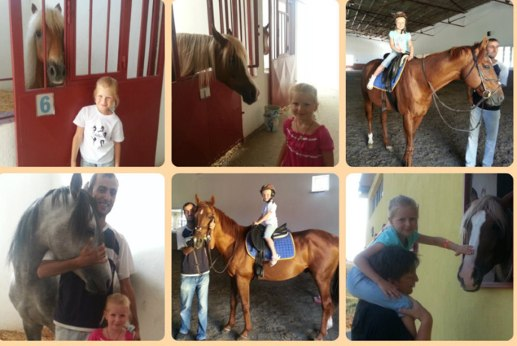 Олеся Власова и её любимые лошадки