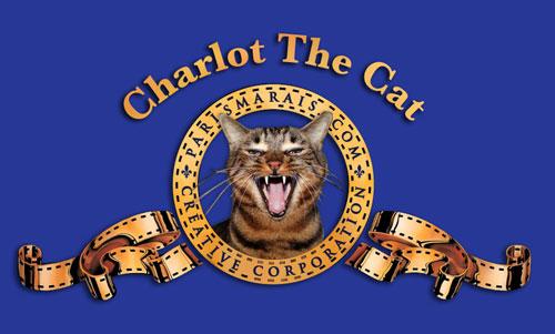 Charlot The Cat / ParisMarais.com by Yukié Matsushita
