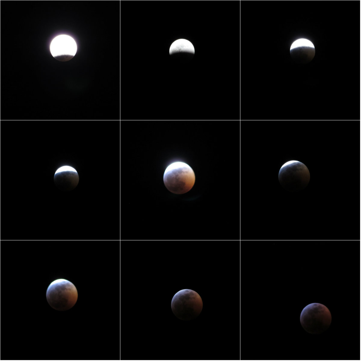 SUPER BLOOD WOLF MOON LUNAR ECLIPSE 1/20