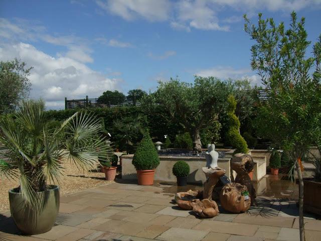 Alternative Eden Exotic Garden A Trip To Olive Grove Nursery