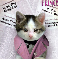 Cat-troversy
