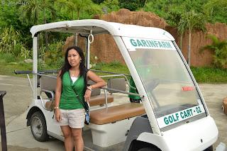 golf cart in the farm