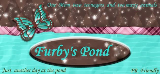 Furby's Pond