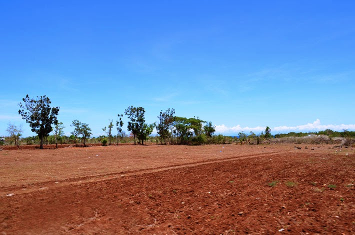 planting field, Siquijor Island, Philippines