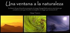 Mi blog de Fotografía de Naturaleza