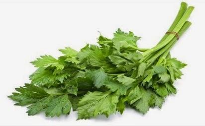 manfaat daun seledri untuk rambut,seledri untuk wajah,darah tinggi,untuk bayi,diabetes,Camilan bayi,kecantikan,ginjal,