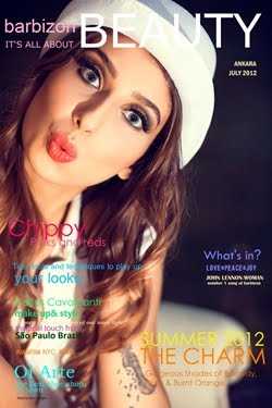 BARBIZON COVERS