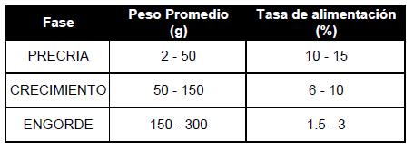 Servicios integrales del agro cultivo de tilapia roja for Tabla de alimentacion para tilapia roja