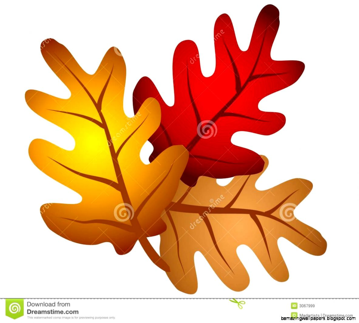 Autumn Oak Tree Leaves Clipart Royalty Free Stock Images   Image