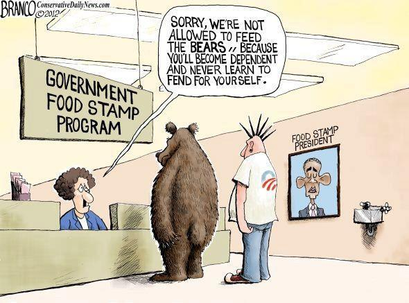 food stamps bears depend
