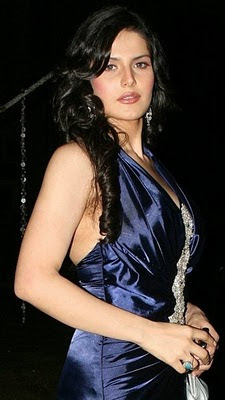 Zarine Khan Bikini