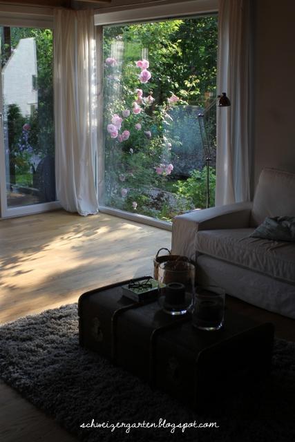Ein schweizer garten eine kletterrose im wohnzimmer for Wohnzimmer zur mitte