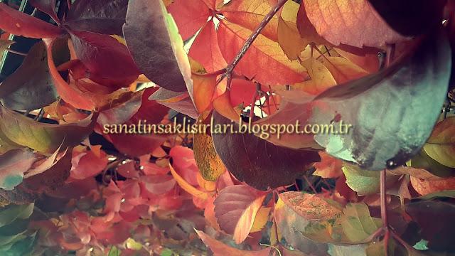 İçimden Gelenler / Bendeki Durumlar / Sonbahar yapraklar