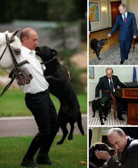 Peace On Earth Vladimir Putin Russia S Top Dog Is A Party Animal