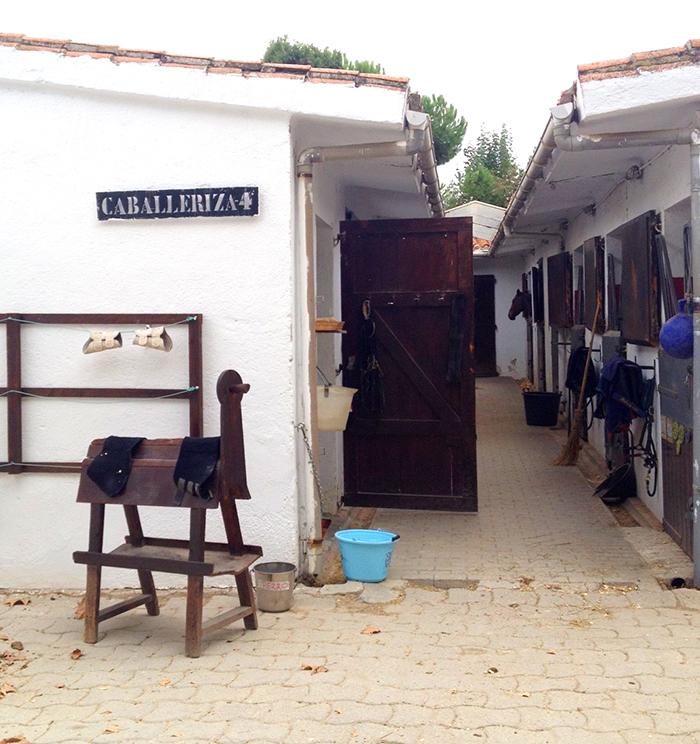 CLUB-HIPICO-SOMOSAGUAS-MADRID-TALESTRIP-LIFESTYL