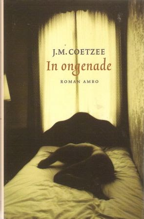 disgrace jm coetzee essay Disgrace by j m coetzee the novel read this first in this course you will be reading one complete novel and writing a literary essay about it.