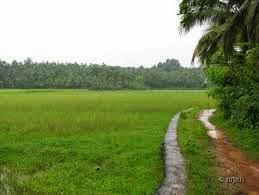 Desa Mojoagung