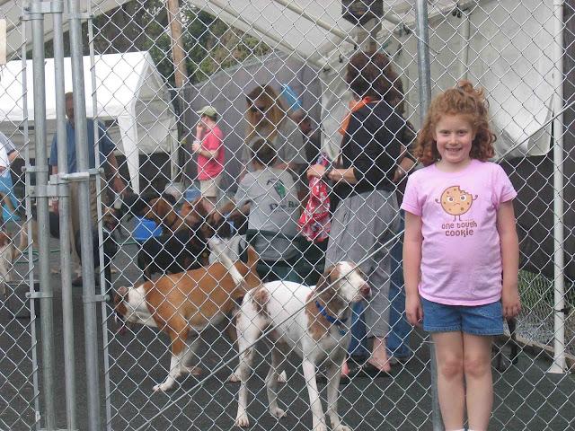 Dog Day Care Midtown Memphis