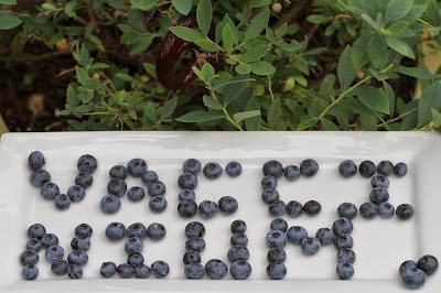 Vaccinium spelled with blueberries