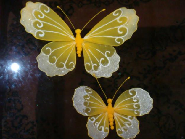 Pictures of Butterflies for sale