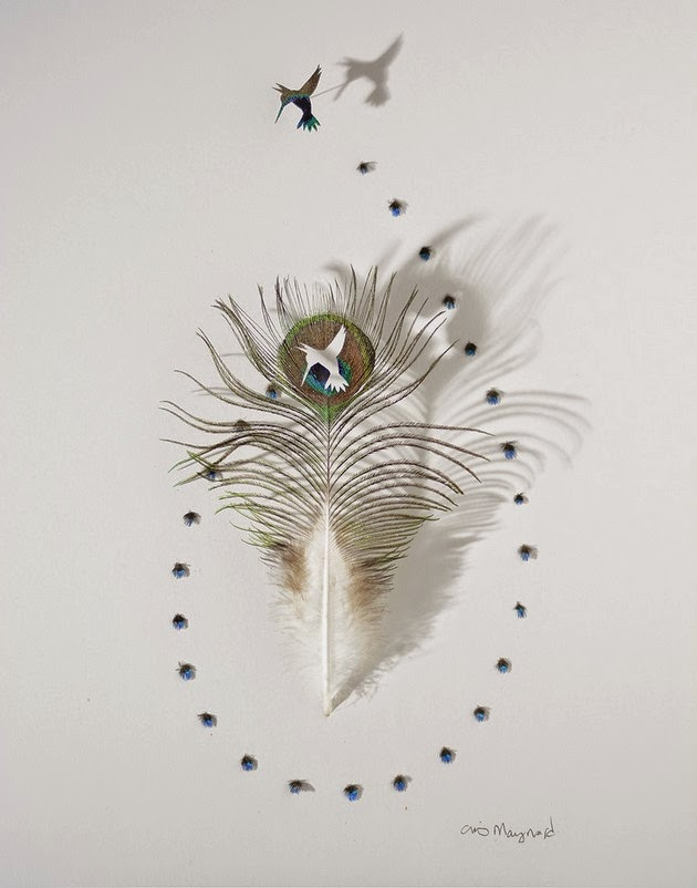 Chris Maynard cut feather art-3