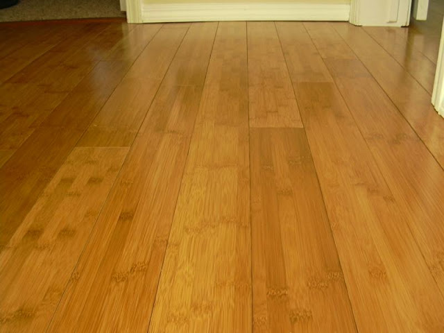 Bamboo Floors5