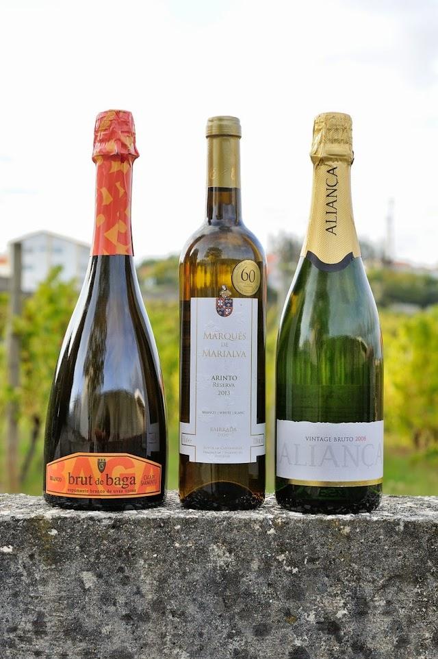 Divulgação: Bairrada elege Os Melhores Vinhos e Espumantes pelo quarto ano - reservarecomendada.blogspot.pt