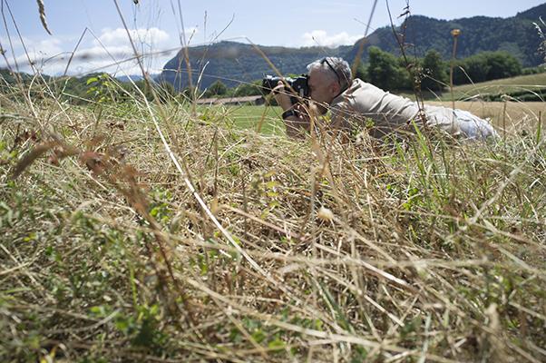 Stagiaire photo dans un champ dans le vercors