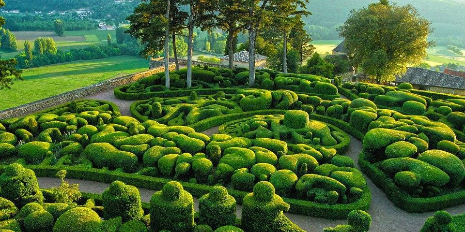 Mon jardin fleuri: Un beau massif en topiaire