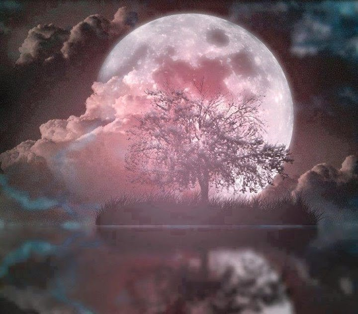 Amazing Moon Rise Beautiful Effects