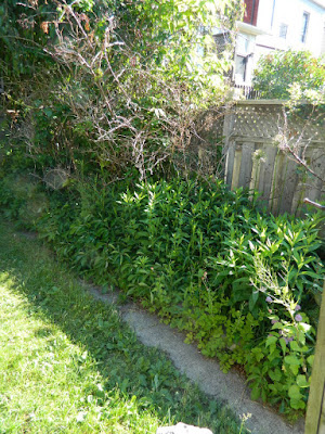 Toronto Riverdale back yard garden cleanup before by Paul Jung Gardening Services