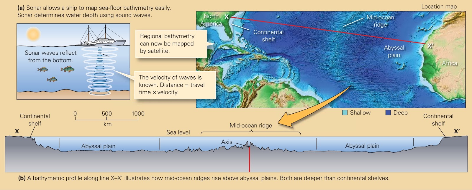 The discovery of sea floor spreading learning geology bathymetry of mid ocean ridges and abyssal plains gumiabroncs Image collections