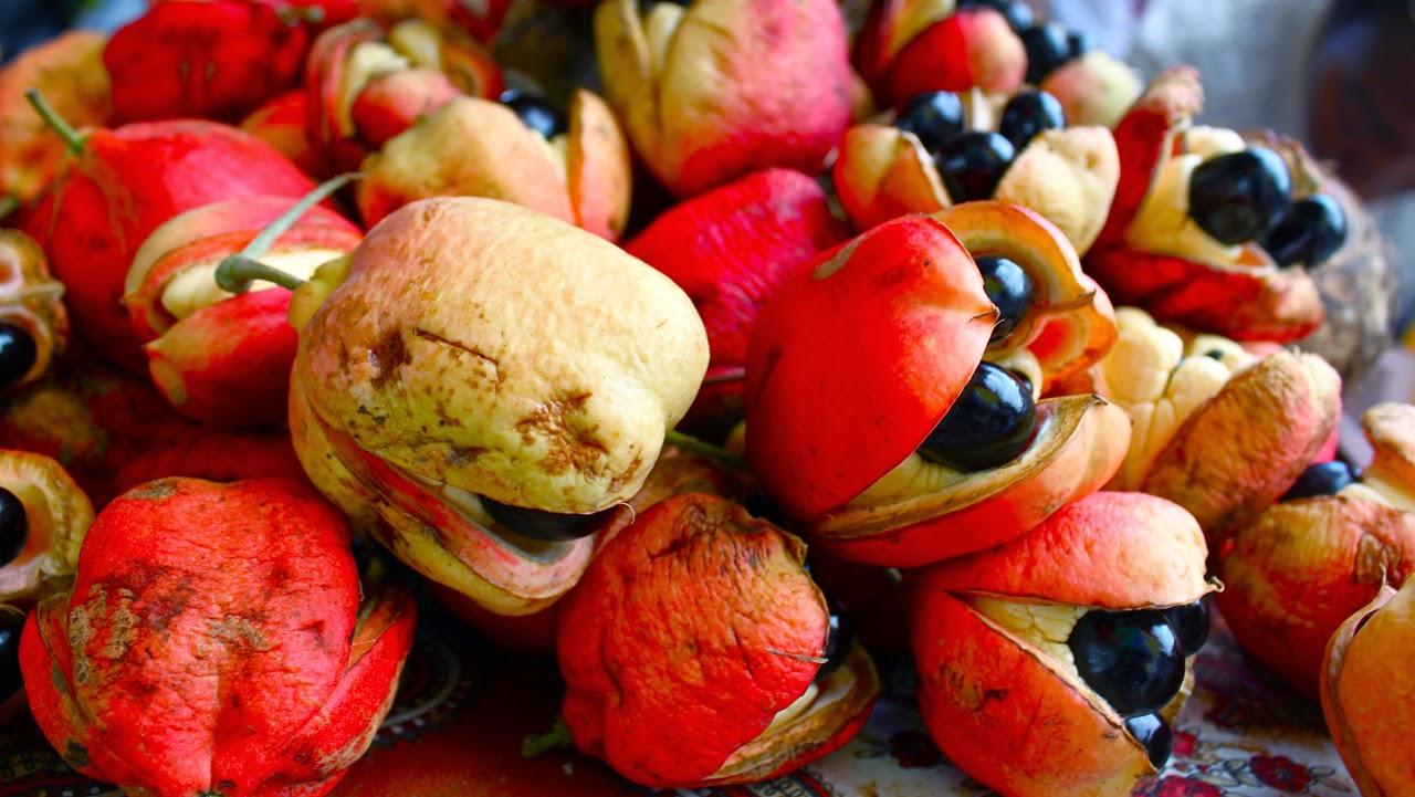 Ackee: Makanan - Makanan Lezat Yang Beracun