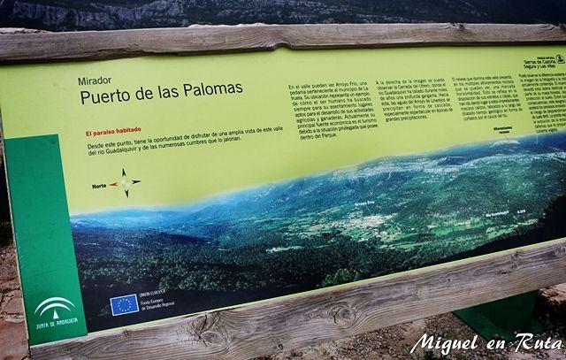 Puerto-Palomas-Cazorla