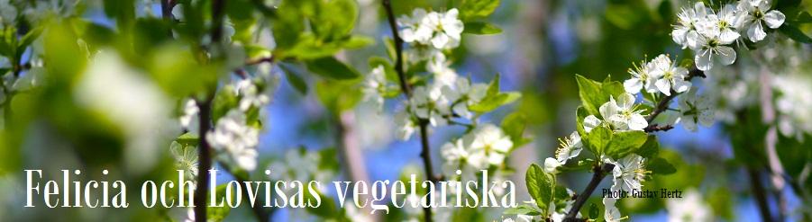 Felicia och Lovisas vegetariska