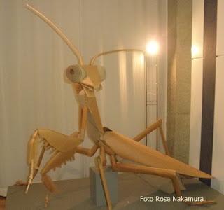 Mundo do insetos-Japão