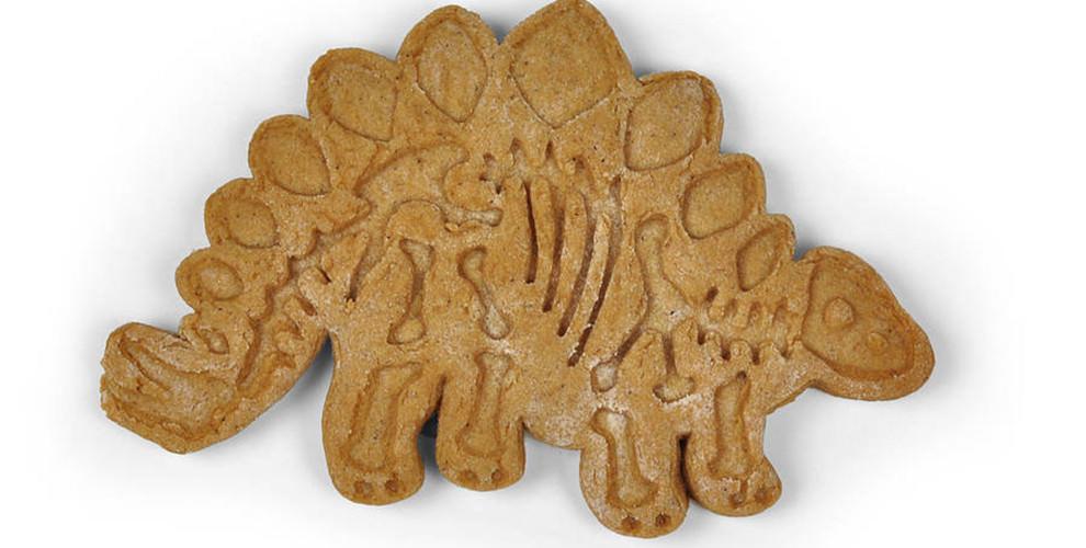 こんなクッキーいいな、恐竜の骨の形にくり抜くやつ