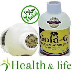 obat tradisional asam lambung