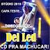 Del Led - (CD PRA MACHUCAR) Stúdio - 2015