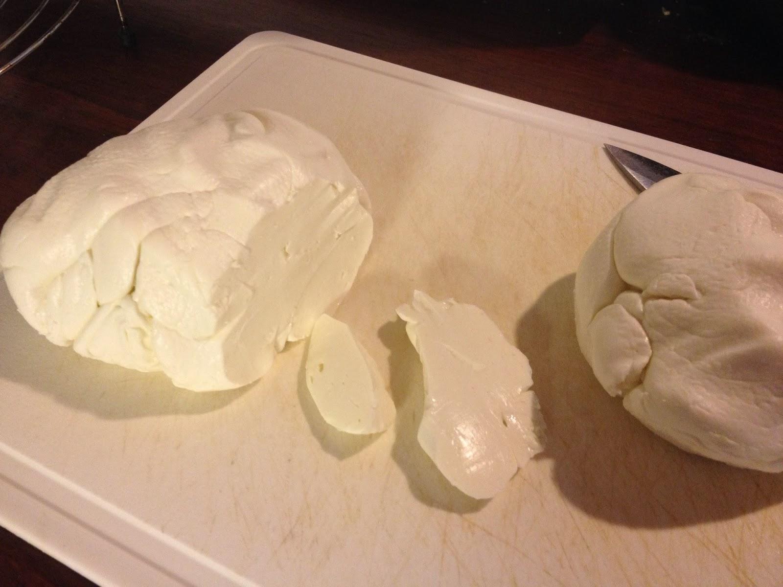 the big cheese making kit homemade mozzarella